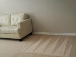 San Antonio carpet cleaner