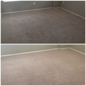 san antonio carpet cleaners