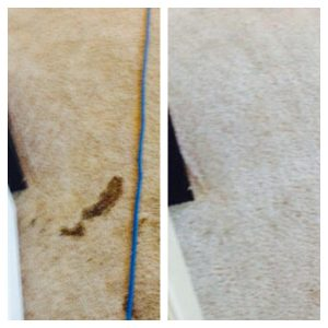 carpet cleaning san antonio