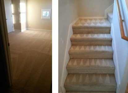 carpetcleaningproperlypic