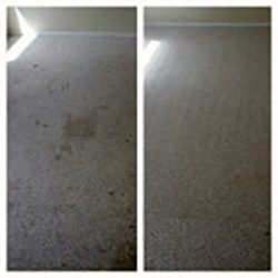 carpet cleaner san Antonio