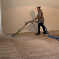 Best Carpet Cleaners in San Antonio