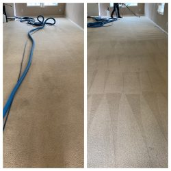 Before And After Carpet Cleaning San Antonio