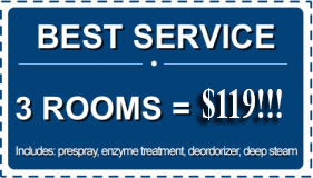 This is a coupon for Beyer's Carpet Cleaning Service. you don't have to print it, just reference it online. This service is discounted to $119 for 3 rooms!