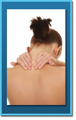 chiropractic care new port richey FL