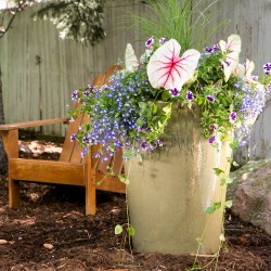 Patio Planter As A Flower Arrangement For An Event