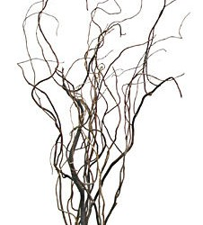 Wedding Flowers: Curly Willow