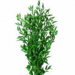 Wedding Flowers: Italian Ruscus