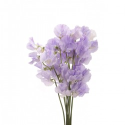 Wedding Flowers: Sweet Peas