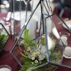 Geometric Centerpiece With Succulents.