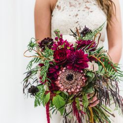 Protea Focused Fort Collins Bridal Bouquet