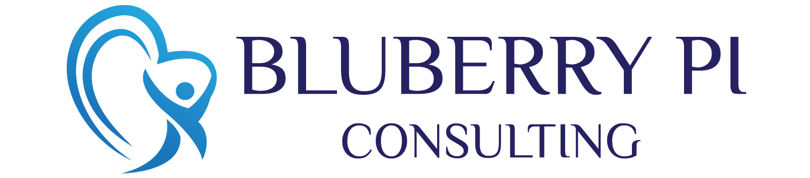BLUBERRY PI CONSULTING