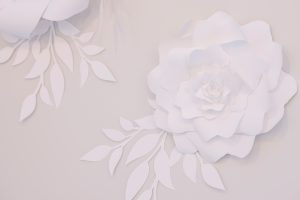 Weddings Shops in Denver, Colorado | Blue Bridal Boutique