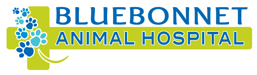 Bluebonnet Animal Hospital