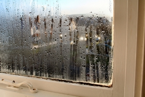 Image of window with moisture
