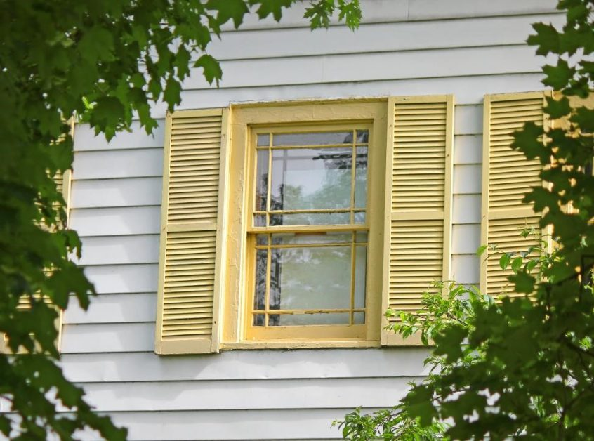 leaves framing a window with yellow shutters on a home with white siding