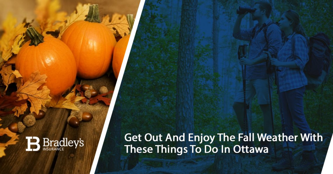 Get Out and Enjoy The Fall Weather With These Things To Do In Ottawa