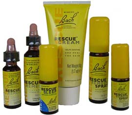 image-BachProducts