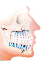 dental-care-santa-monica