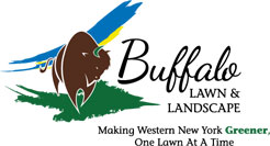 Buffalo Lawn & Landscape, Inc.