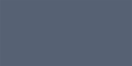 Burlison Family Wellness Chiropractic
