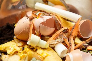Organic biological kitchen waste, rotten food and leftovers from cooking, prepared for composting. Egg shells, pumpkin, banana and carrot peel.