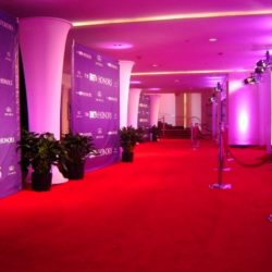 Custom red carpet lighting and event decorations