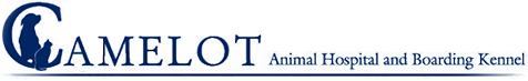 Camelot Animal Hospital