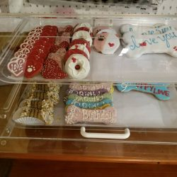 A selection of frosted dog cookies at doggy daycare - Canine Oasis