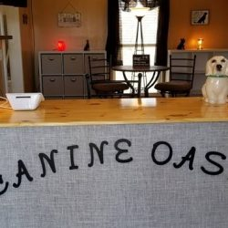 The Canine Oasis front desk - Canine Oasis