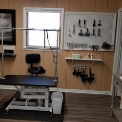 Our dog grooming room at Canine Oasis