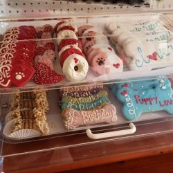 A selection of dog cookies at our doggy daycare - Canine Oasis
