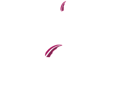 Capital City Law