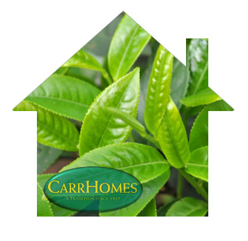 carrhomes feel 3