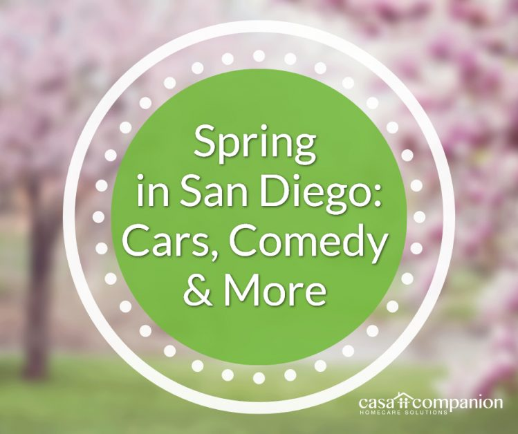 Spring in San Diego
