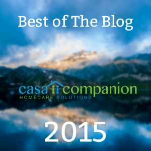 Casa Best of Blog 2015 (1)