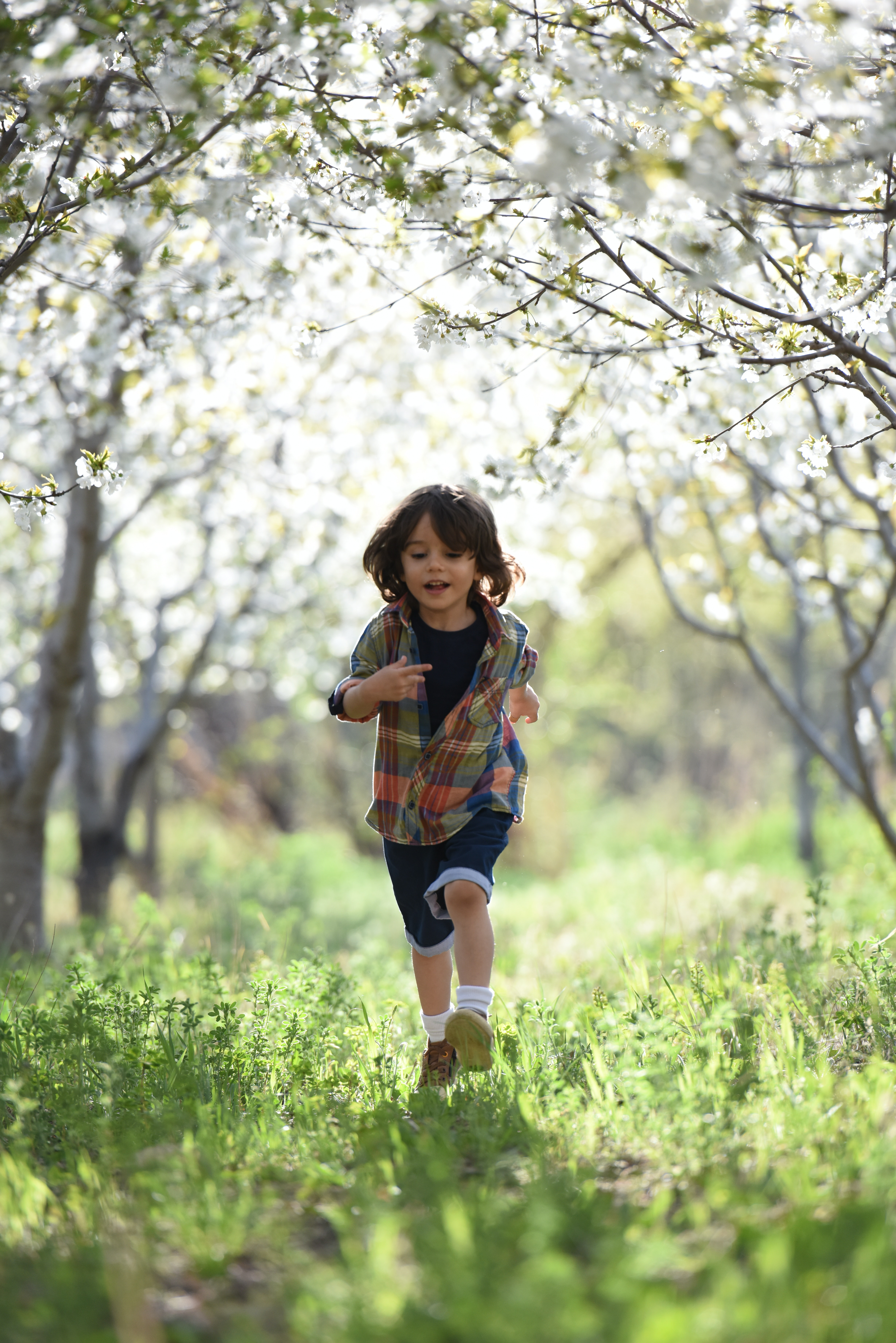 Boy running through field lined by trees