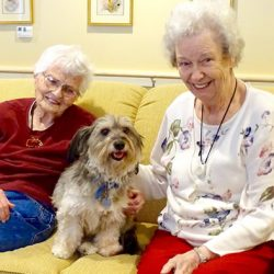 Cute dog poses with residents at Alzheimer's care center in Vermont