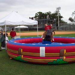 Image of Children's Mechanical Bull