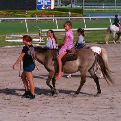 Pony Rides Party Rental - Celebration Source