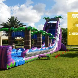 Paradise Plunge Inflatable Water Slide Rental - Celebration Source