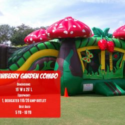 Strawberry Garden Inflatable Bouncer Rental-Celebration Source