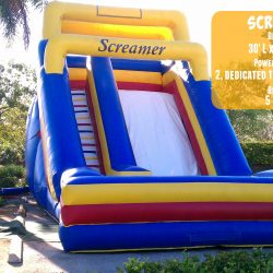 Screamer Inflatable Slide-Celebration Source