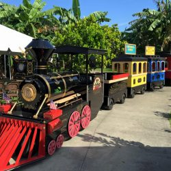 Rental Trackless Train-Celebration Source