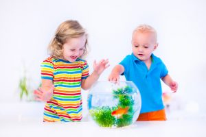 Children with goldfish