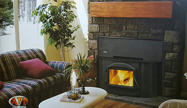 Fireplace insert From Chimney Care Plus