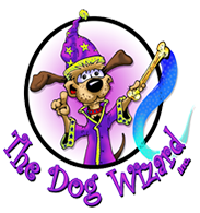 The Cincinnati Dog Wizard