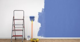 Paint Roller and Step Ladder
