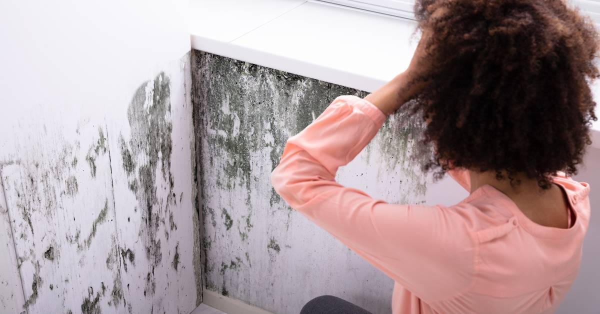 Homeowner worrying about mold in her home