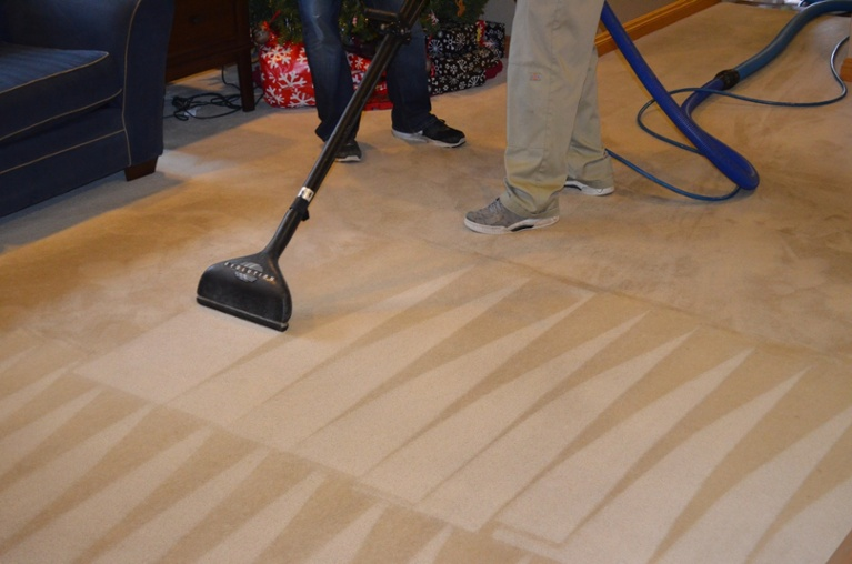 Professional Carpet Cleaning Makes A Difference